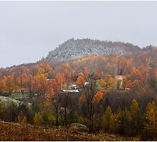 First Dusting by Deborah  Benoit