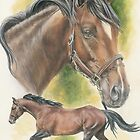 Thoroughbred by BarbBarcikKeith