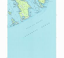 Maine USGS Historical Map Great Wass Island 105171 1950 24000 by wetdryvac