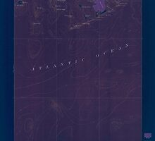 Maine USGS Historical Map Great Wass Island 306593 1921 62500 Inversion by wetdryvac