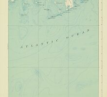 Maine USGS Historical Map Great Wass Island 306594 1921 62500 by wetdryvac