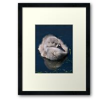 Innocent Dreamer Framed Print