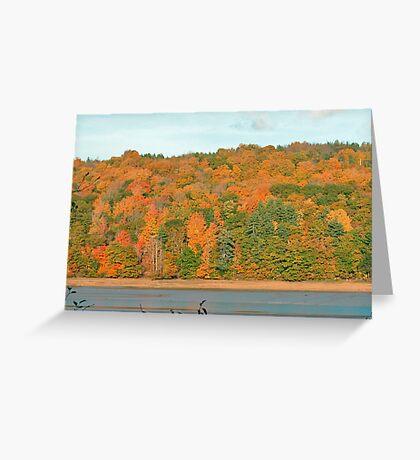 Bear River - Fall 2005 Greeting Card