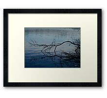 Branch on Water Framed Print