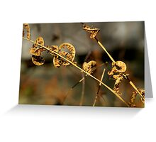 Fall Fern Greeting Card