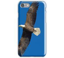 Bald Eagle iPhone Case/Skin