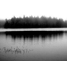 Spectacle Lake in Fog by Gerry Curry