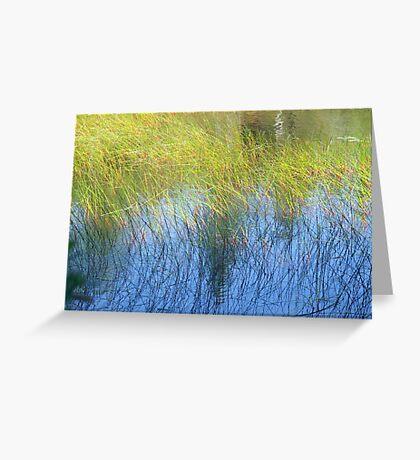 Fall Water Reeds Greeting Card