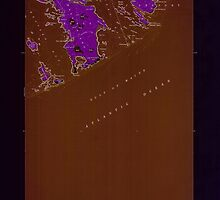 Maine USGS Historical Map Great Wass Island 806734 1950 24000 Inversion by wetdryvac