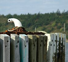 White Bollard by Gerry Curry