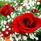 Red Rose by WildestArt