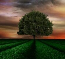 the lone green tree  Sticker