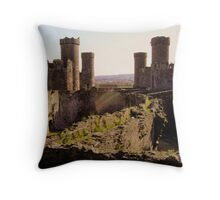 Conwy on the Inside Throw Pillow