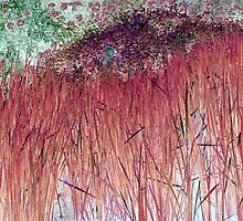 Cranberry Reeds-Available As Art Prints-Mugs,Cases,Duvets,T Shirts,Stickers,etc by Robert Burns
