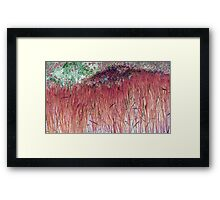 Cranberry Reeds-Available As Art Prints-Mugs,Cases,Duvets,T Shirts,Stickers,etc Framed Print