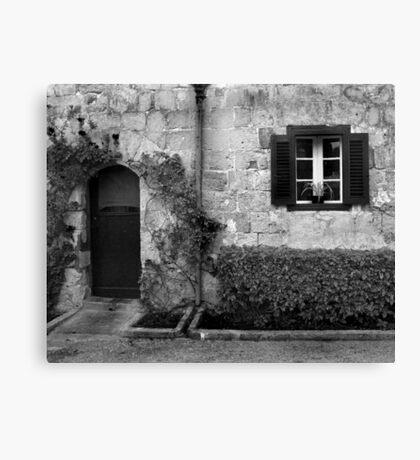 Door and window Canvas Print