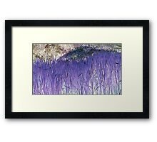 Purple Reeds 2-Available As Art Prints-Mugs,Cases,Duvets,T Shirts,Stickers,etc Framed Print