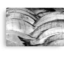 Fish scales. Canvas Print
