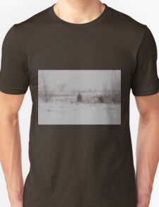 Winter scene 2-14-2015 T-Shirt