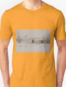 Winter scene 2-14-2015 T-Shirt