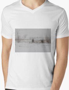 Winter scene 2-14-2015 Mens V-Neck T-Shirt