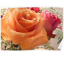 Joyful Roses - 3     ^ Poster