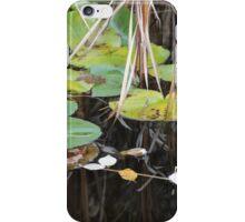 Harmony in Fall iPhone Case/Skin
