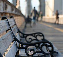brooklyn bench by Sonia de Macedo-Stewart