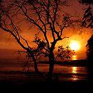 HAPPY HALLOWEEN ON ANDERSON ISLAND  by MsLiz