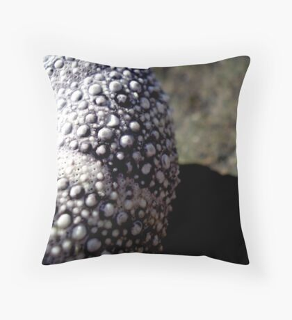 The Underside of a Sea Urchin Throw Pillow