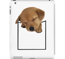pocket dog iPad Case/Skin