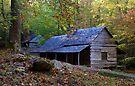 Noah Built A Farm by Anthony Pierce