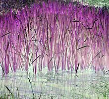 Purple Reeds 2-Available As Art Prints-Mugs,Cases,Duvets,T Shirts,Stickers,etc by Robert Burns