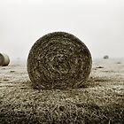 Haystacks  by James  Archibald
