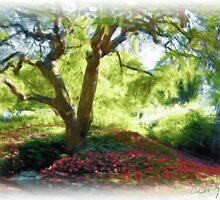 Garden at Strawbery Banke by Christine Costanzo