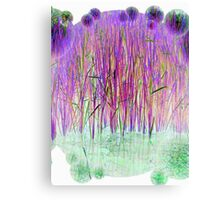 Many Coloured Reeds-Available As Art Prints-Mugs,Cases,Duvets,T Shirts,Stickers,etc Canvas Print