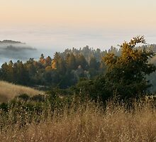 Dawn over Sonoma County by TomGreenPhotos