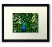 ~ ROYAL MOSAIC PEACOCK ~ Framed Print