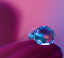 Crystal Ball  by Sherstin Schwartz