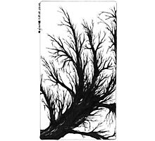 Tree, Black and White Doodle, Pen and Ink Photographic Print