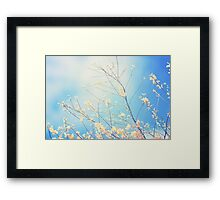 The earth laughs in flowers.  Ralph Waldo Emerson     Framed Print