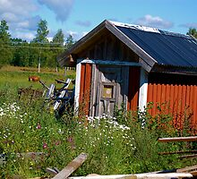 Country Shed by pulsdesign
