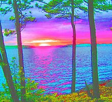 Cottage Sunset at Lake CatchaComa,-Available As Art Prints-Mugs,Cases,Duvets,T Shirts,Stickers,etc by Robert Burns