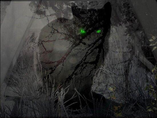 Spooky Cat by ienemien