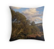 Snowdon from path to former Dinorwic Slate Quarry Throw Pillow