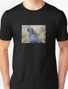Bore Black Feathers T-Shirt