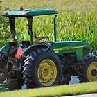 John Deere Morning by Keala