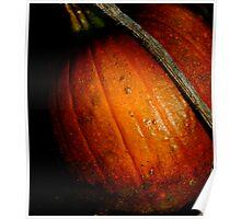 """""""Pumpkin Patch"""" Poster"""