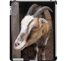 A Fuzzy Friend iPad Case/Skin