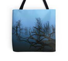 Lake Eucumbene Tote Bag